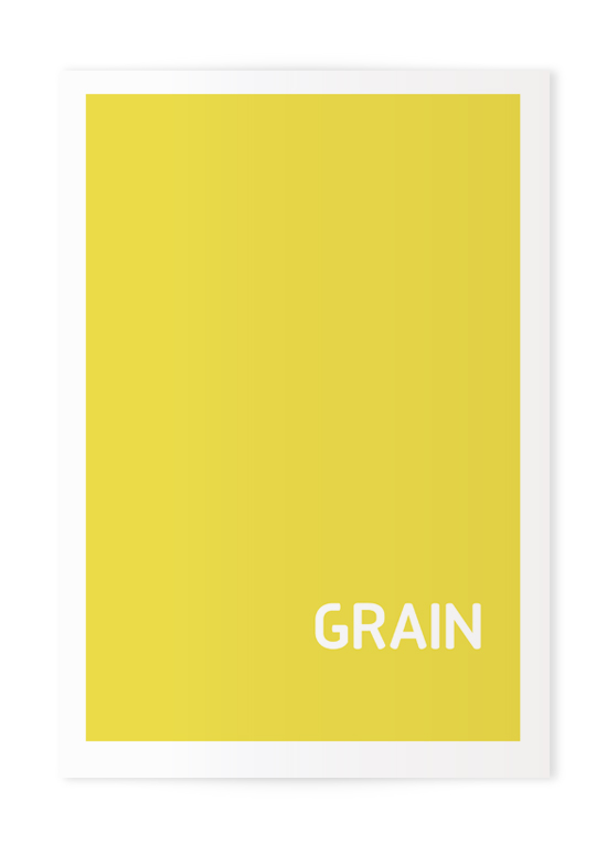 GRAIN Publication