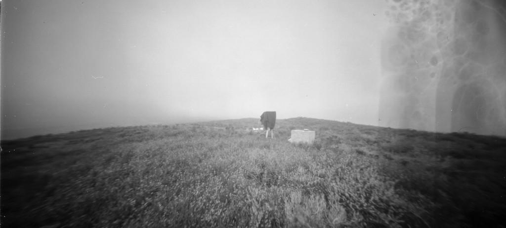 ph landscapes-1web